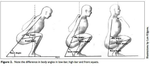 A Diagram Illustrating The Biomechanics Of Squat Styles