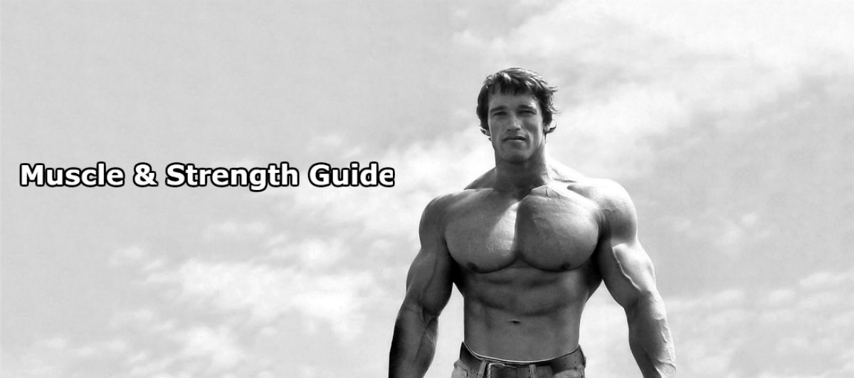 Arnold with the words ultimate guide to muscle and strength