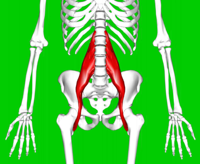 area of psoas muscle pain symptoms requiring treatment