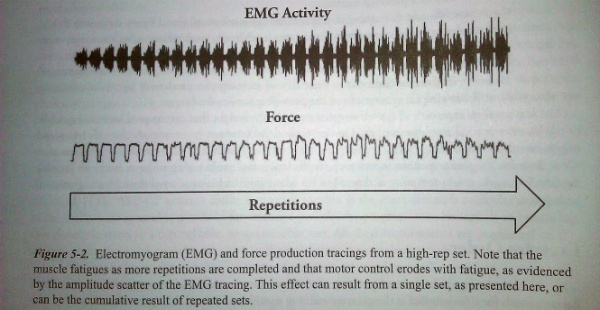 EMG study showing the effects of lifting weights on fatigue during Greyskull LP