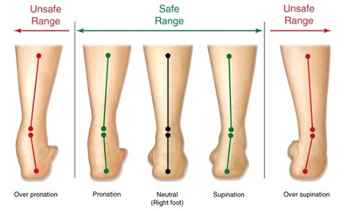 Diagram illustrating supination and pronation of the ankles