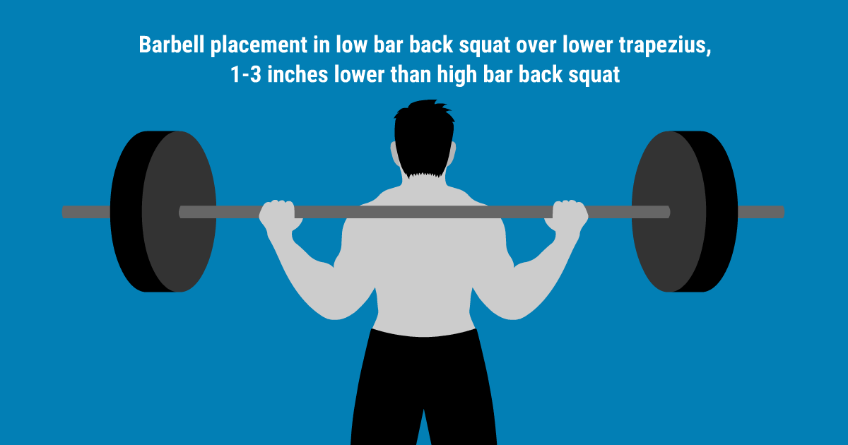 A graphic image showing where to place the bar during a low bar squat