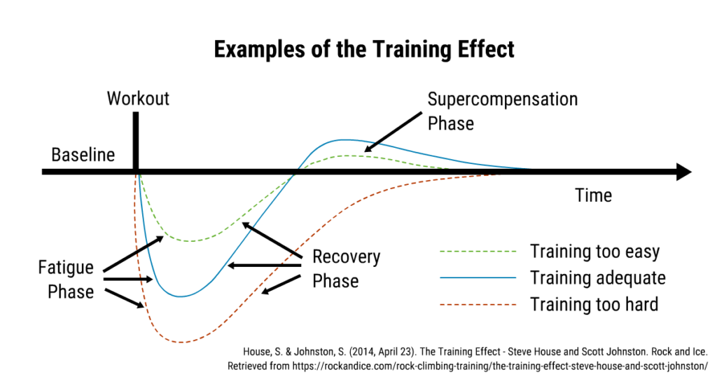 A graph showing that timing and intensity influence CNS response.